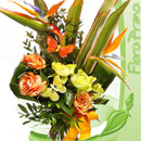 Flora Prima Paradiso 130x130